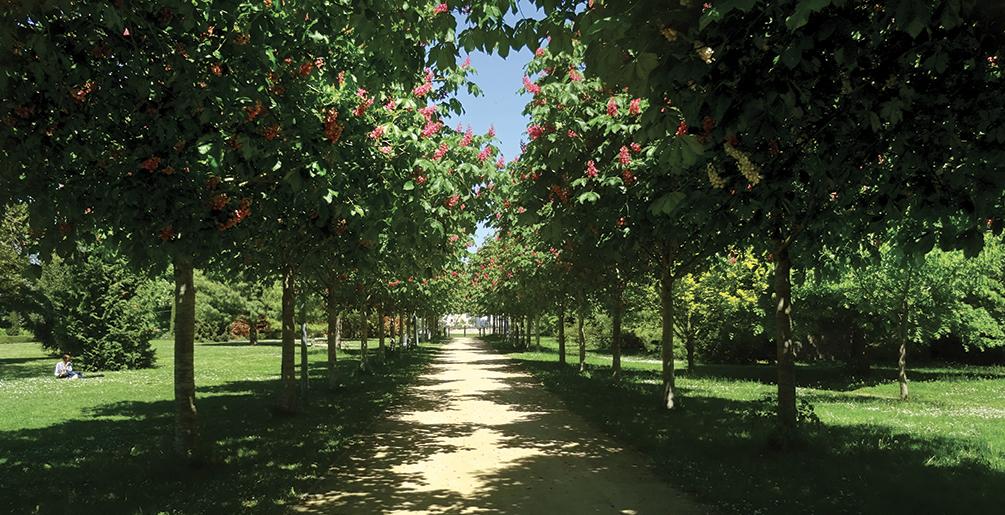 Parc des Marronniers